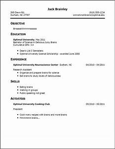 resume examples templates awesome examples of resumes for With resume template for someone with no work experience