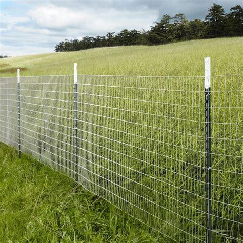 best 20 chicken fence ideas on
