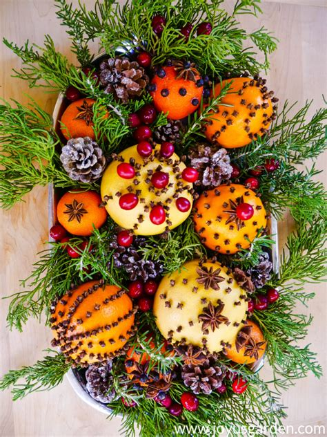 homemade christmas decorations  fruits  spices