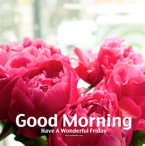Good Morning, Have A Wonderful Friday Pictures, Photos, And Images For Facebook, Tumblr