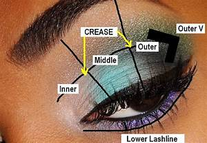 The Fancy Face  Tips For Beginners