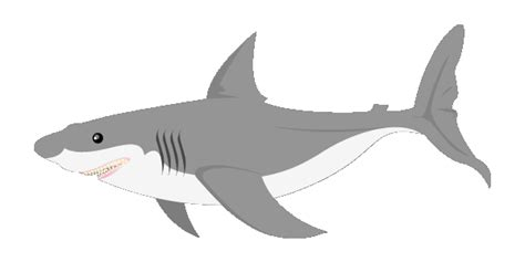 animated shark   clip art  clip art