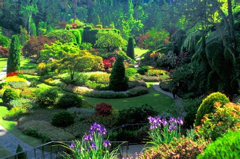 n colorful butchart gardens canada