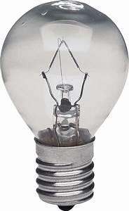 Detailed Bulb transparent PNG - StickPNG