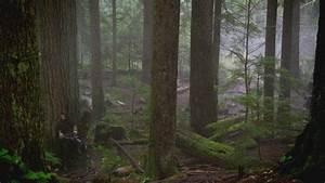 Foret De Sherwood : image 2x19 robin des bois attente for t de ~ Voncanada.com Idées de Décoration