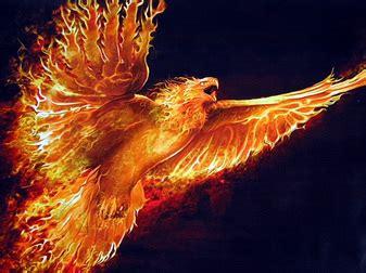 Phoenix - Medieval Beasts Encyclopedia