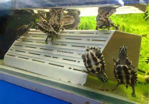 turtle pier basking plastic platform dock terraced slope for aquarium fish tank ebay