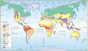 Localiza en el Planisferio las siguientes ciudades