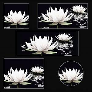 Deko Bilder Schwarz Weiss : artland glasbild botanik blumen seerose fotografie schwarz wei online kaufen otto ~ Bigdaddyawards.com Haus und Dekorationen