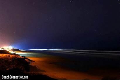 Beach Night Oregon Coast Peaceful Contest Beauty