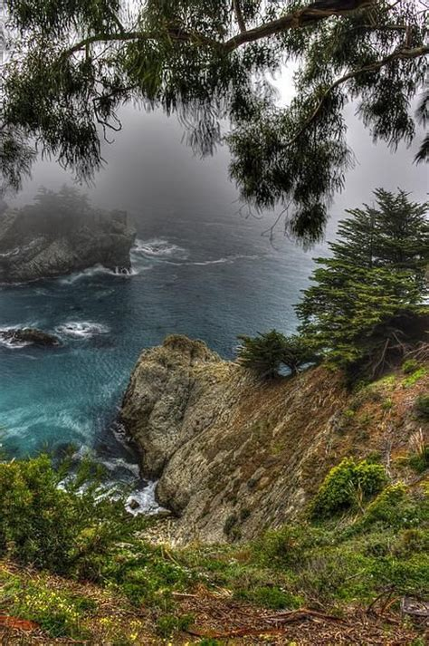 Amazing Resumes Central Coast by Big Sur Pfeiffer State Park Central California Coast By Michael Mazaika Amazing World