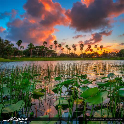 sunset at lake palm gardens