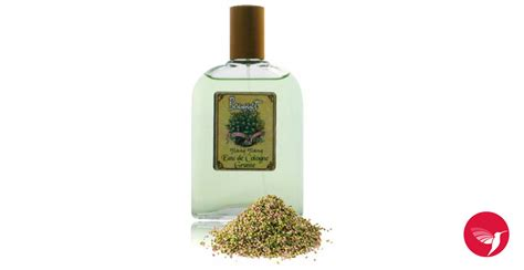 printemps si鑒e social eau de cologne ylang ylang bouchara parfum un parfum pour femme