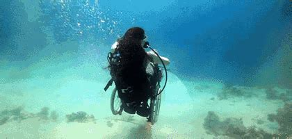 Wheelchair GIF - Find & Share on GIPHY