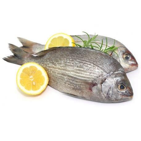 cuisiner dorade grise dorade grise achat vente de poisson frais en direct de bretagne