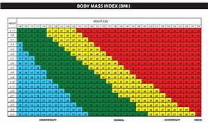 Why Measure Body Fat Unique Unique