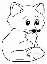 Fox Cartoon Coloring Animal sketch template
