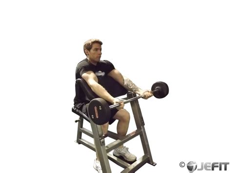Barbell Preacher Curl  Exercise Database  Jefit Best