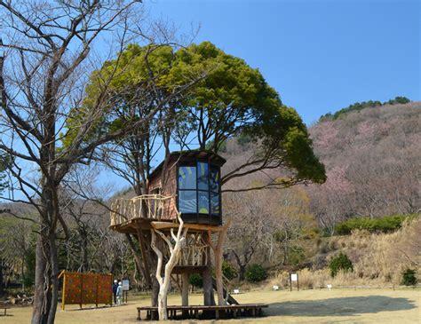 Tree House Master