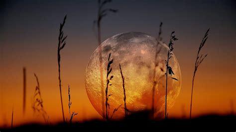 mesmerizing moon backgrounds backgrounds design