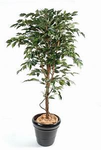 Arbre D Intérieur : arbre artificiel ficus tronc simple plante synthetique int rieur cm ~ Preciouscoupons.com Idées de Décoration