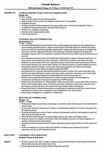 real estate coordinator resume samples velvet jobs With real free resume sites
