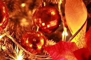 Holiday Season Background Free Stock Photo - Public Domain ...