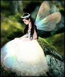 Fairies Pixies Nymphs Sprites Elves