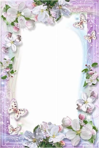 Frames Transparent Frame Flower Flowers Clipart Borders