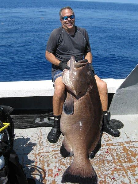 dan grouper carbo mcmahon team lb spearblog