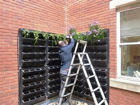 How To Make Vertical Garden Indoor Living Wall by Creative Living Wall Planter Ideas Design Your Own
