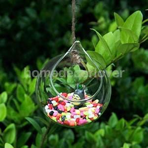 Pflanze In Flasche : online kaufen gro handel glas gartenkugeln aus china glas ~ Articles-book.com Haus und Dekorationen