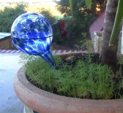 2pcs contr 244 leur irrigation goutte 224 goutte fleur plante 200ml arrosage automatique bleu boule de