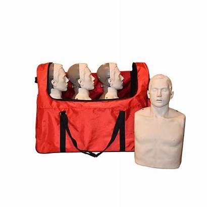 Cpr Manikin Feedback Adult Led Pack Training