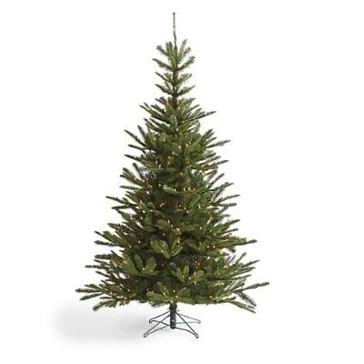 Pre Lit Entryway Christmas Trees by Pre Lit Noble Fir Artificial Christmas Tree Grandin Road
