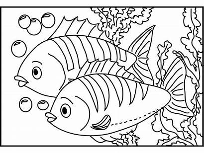 Coloring Printable Fish Rainbow Pages