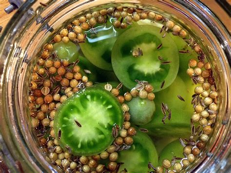 comment cuisiner des tomates vertes comment faire un pickle de tomates vertes ni cru ni cuit
