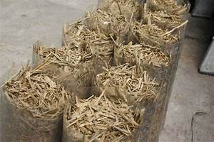 Comment Cultiver Des Champignons : la culture de champignons sur paille ~ Melissatoandfro.com Idées de Décoration