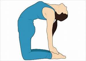 Yoga Poses for Weight Loss : The First Step Towards The ...