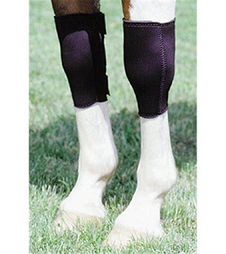 boots horse barrel racing protection knee neoprene reining leg sweat equine training care amazon choice boot sports universal
