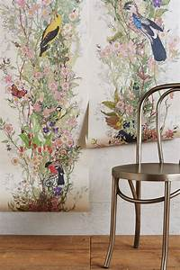 Bird Sanctuary Wallpaper