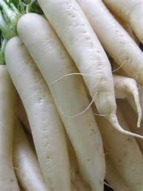 cuisiner les navets blancs alicament le navet luo bo jean pélissier