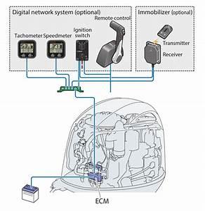 Yamaha Command Link Wiring  Yamaha  Free Engine Image For
