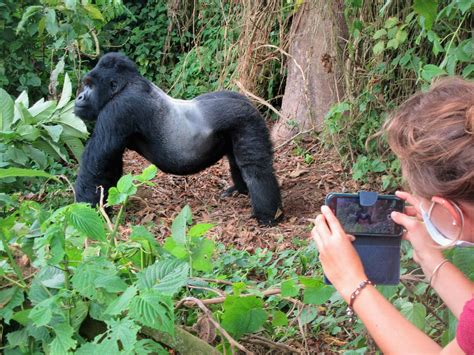 Bill's Excellent Adventures: Congo-Kinshasa