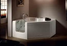 Handicap Tub Shower Combo by Best 20 Handicap Bathtub Ideas On Pinterest Shower Accessories Safety Sto