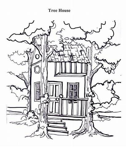 Coloring Tree Treehouse Between