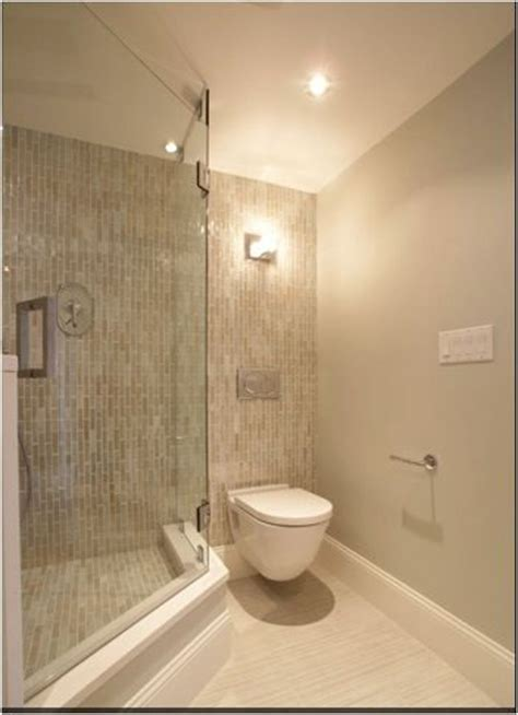 solution for step up shower   Basement Remodel   Pinterest