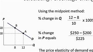 Economics Tutorial: Calculating Elasticity of Demand and ...