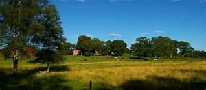 Ferienhaus In Schweden Am See Kaufen : ferien in schweden im ferienhaus am see anreise mit auto ~ Lizthompson.info Haus und Dekorationen