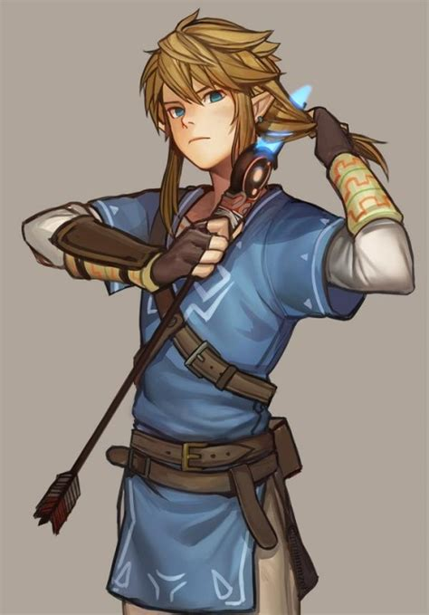 The Legend Of Zelda Hyrule Warriors Link By Theligth On